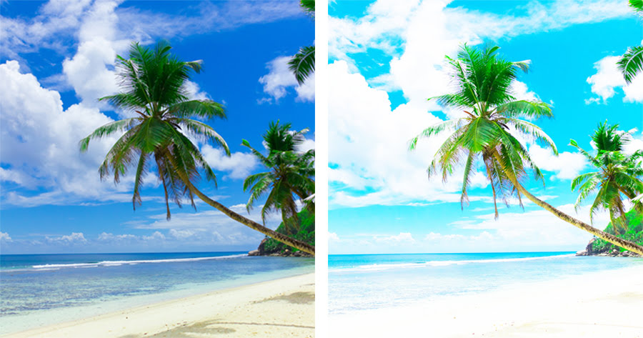 Cameras with a wide dynamic range are able to hold onto more detail in the shadows and highlights. The image on the left shows what an image with wide dynamic range would look like and the image on the right shows what the same image would look like with narrow dynamic range